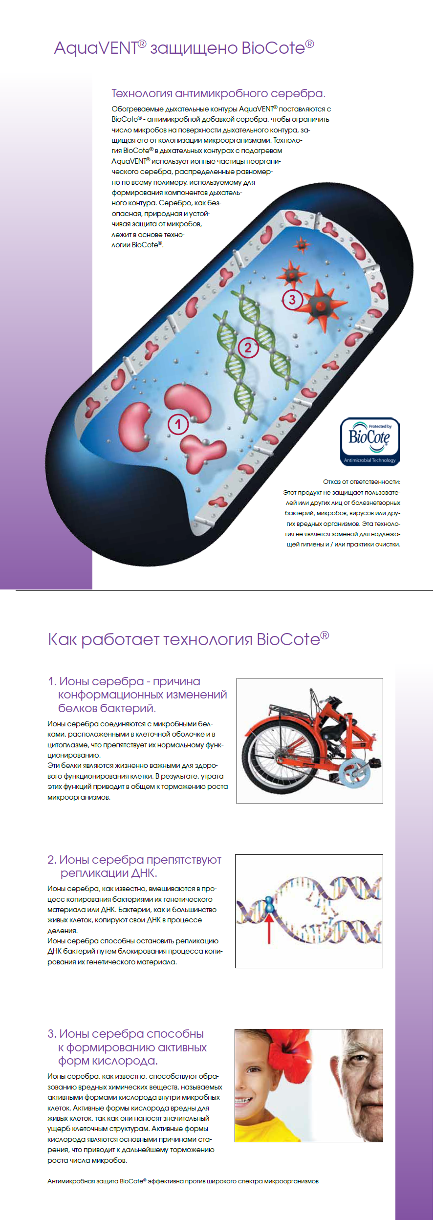 BioCote.png (1.15 MB)