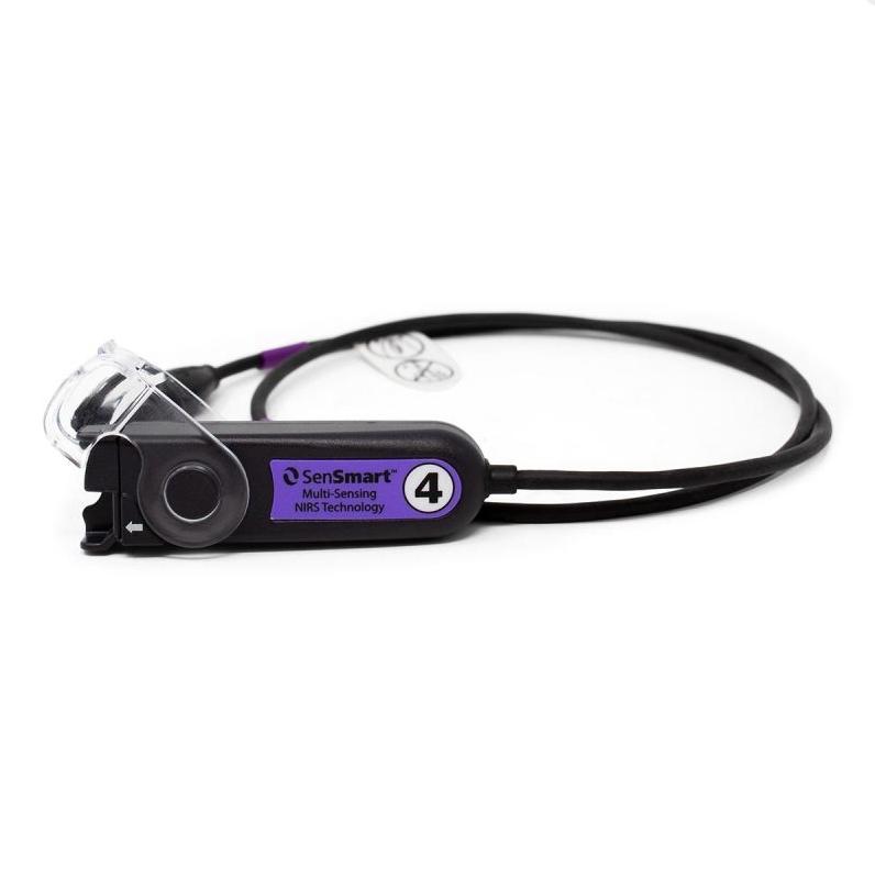 4 Purple.jpg (88 KB)